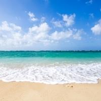 綺麗な海が見たいの画像
