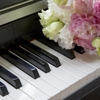 ピアノ習ってます/習ってました♪の画像