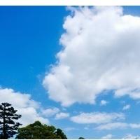 見上げる空が好きの画像